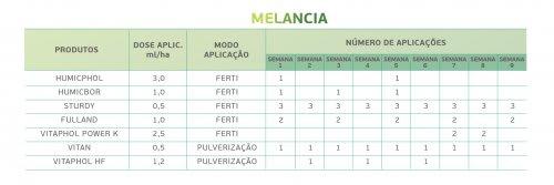 Melancia 3