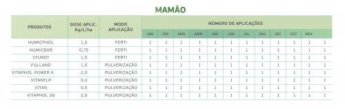 Mamão 1