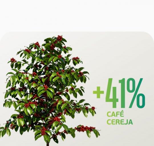 Mais de 41% de café cereja? Veja o que o Mathury pode fazer pela sua colheita.